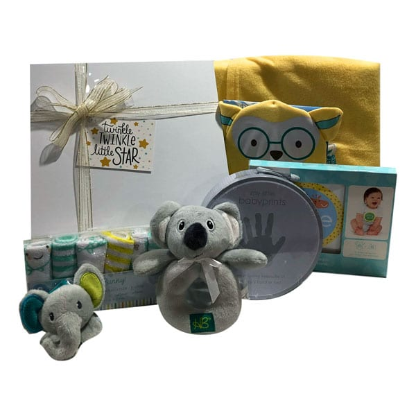 Twinkle Twinkle Little Star Gift Basket with blanket, hand print kit, rattles, hat, booties, gloves and Memory Stickers