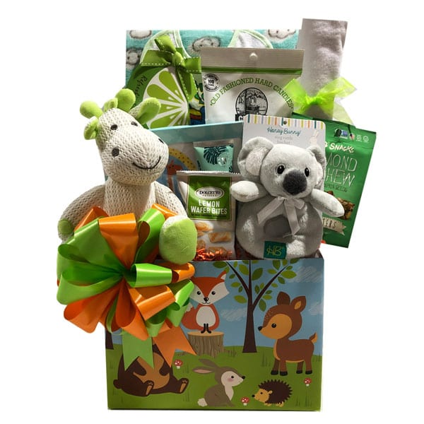 Forest Friends-filled with baby toys, clothing and plush for baby and treats for mom and dad too.